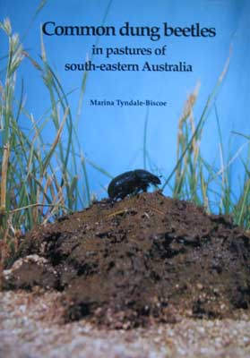 Image for Common Dung Beetles in Pastures of South-Eastern Australia