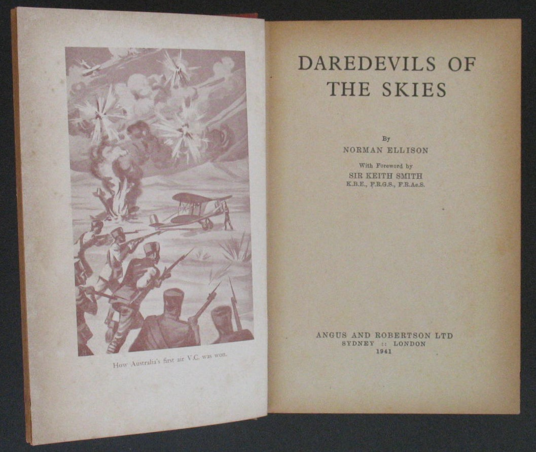 Image for Daredevils of the Skies
